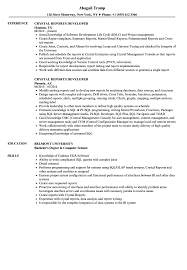 Crystal Reports Developer Resume Crystal Reports Developer Resume Samples Velvet Jobs 1