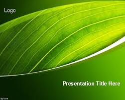 Plain Ppt Templates Free Plain Powerpoint Templates