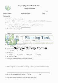Marketing Strategy Questionnaire Rome Fontanacountryinn Com