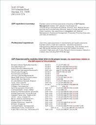 Resume Summary Examples For Customer Service Elegant Customer