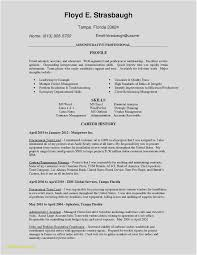 Download Resume Format In Word Luxury Cv Templates 0d Wallpapers 52