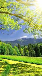 Green Mountains Nature Mobile Fonds d ...