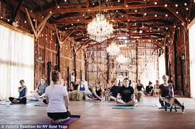 a new beginning members of the retreat gathered in a chandelier lit barn on