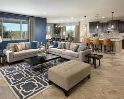 One way that you can separate your living room within an open concept space  is to  Blue Accent ...