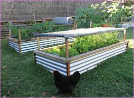 Small Picture Raised Bed Design Ideas a raised bed garden constructed of