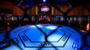 MMA record holder dies by suicide after ...
