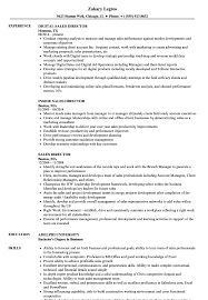 Director Resume Sample Sales Director Resume Samples Velvet Jobs 28