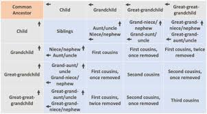 1st Cousin Once Removed Chart Understanding Kinship Terms