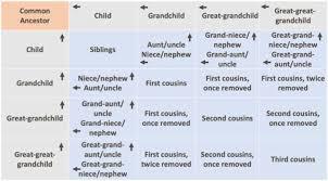 Understanding Kinship Terms
