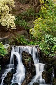 los angeles county arboretum botanic garden arcadia california lots of cool waterfalls