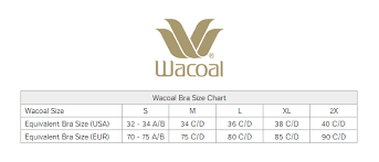 Wacoal Visual Effects All In One Bodysuit
