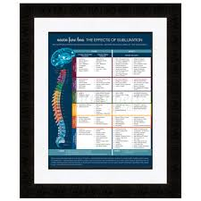 neuro fuse poster (new!) well aligned products Modern Fuse Box chiropractic meric chart poster fuse neuro nervous system patient education modern spine brain modern fuse box for classic beetle