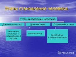 Презентация на тему Происхождение человека теории происхождения  8 Этапы становления человека питекантроп синантроп и гейдельбергский человек неандертальцы Кроманьонцы и современные люди