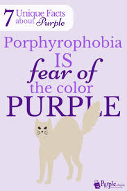 the color purple essays good books you can in a day reader s  17 best images about alles paars purple slippers don t fear the purple fontys denkgroter
