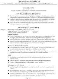 Sample Resume Example 1 Executive Resume Or Management Resume