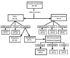 Lymph Flow Chart Diagnostic Flow Chart In The 35 Cases Of Tuberculous