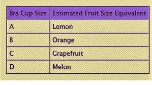 Bra Size Comparison To Fruit