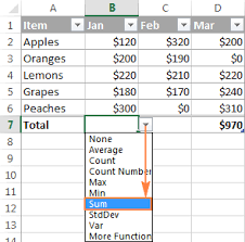 Sum Total Excel Sum Formula To Total A Column Rows Or Only Visible Cells