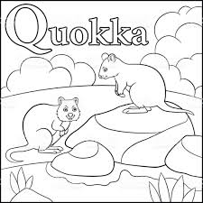 Small Picture Coloring Page Cartoon Animals Alphabet Q Is For Quokka stock