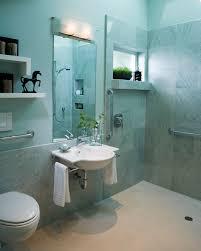 Ada Bathroom Design Ideas Interesting Decoration
