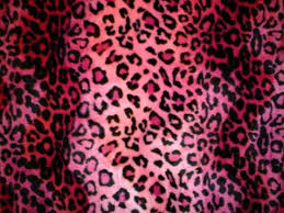 pink and black animal print wallpaper 29 best animal print images on of beautiful