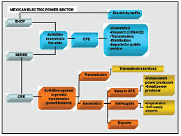 Industrial Organization For The Electricity Sector In Mexico