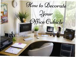 best office cubicles. Best Office Decorations Cubicles