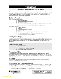 Resume Template For Government Jobs Free Download Examples Of