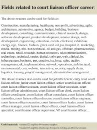Customer Liaison Officer Sample Resume Fascinating Top 48 Court Liaison Officer Resume Samples