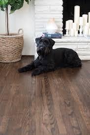 Floor Stain Hardwood Floors Amazing On Floor With Best 10 Hardwood Staining Hardwood Floors Black