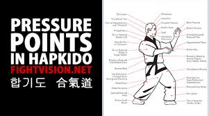 Pressure Point Chart Martial Arts Pressure Points Hapkido