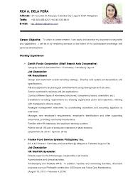Job Application Cv Example Lezincdc Com