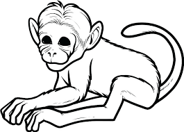 Monkey Coloring Page Monkey Printable Monkey Coloring Page Printable