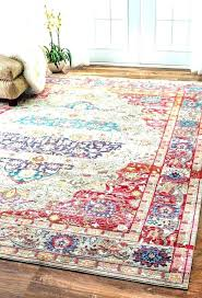 furniture rust colored rug rugs round best of bohemian where to find a more runners