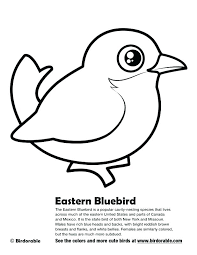 Blue Bird Coloring Pages Angry Bird Coloring Sheets Pages Stunning