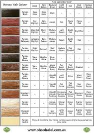 Rainbow Henna Color Chart Sbiroregon Org