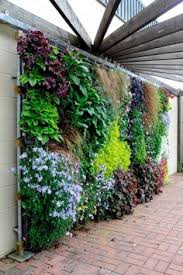 Small Picture 5 Simple Ways to Create a DIY Living Wall Living walls Walls