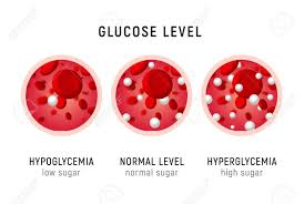 Blood Sugar Levels For Hyperglycemia Chart Glucose Blood Level Sugar Test Diabetes Insulin Hypoglycemia