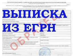 ba vipiska jpg Предоставление сведений Единого государственного реестра ЕГРН является одной из наиболее востребованных услуг Росреестра оказываемых Кадастровой палатой