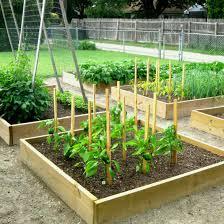 raised vegetable garden ideas outdoor furniture good