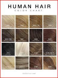 Inoa Hair Color Shades Chart Www Bedowntowndaytona Com