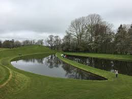 visiting the garden of cosmic speculation
