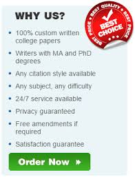 best college paper and custom essay writing service