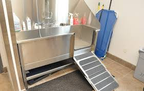 advantages and disadvantages in walk in bathtubs awesome walk in bathtubs for dogs