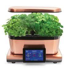 aerogarden herbs aerogarden harvest touch with gourmet herbs seed pod kit herbs
