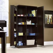 cabinets for home office. Storage Cabinets Home Office Ideas And Fabulous Pictures Ottoman Cabinet Sauder Homeplus Swing Out Hayneedle With Proportions For