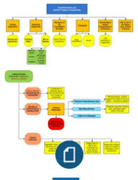 Con Law Flow Charts Law Constitutional Law Law School