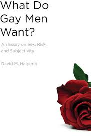 what do gay men want an essay on sex risk and subjectivity by  an essay on sex risk and subjectivity by david m halperin
