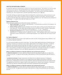 Resume Objective Summary Examples Megakravmaga Com