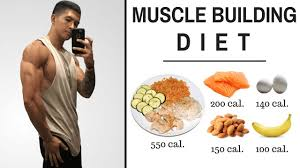 The Best Science Based Diet To Build Lean Muscle 10 Studies